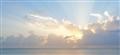 Zanzibar Dawn