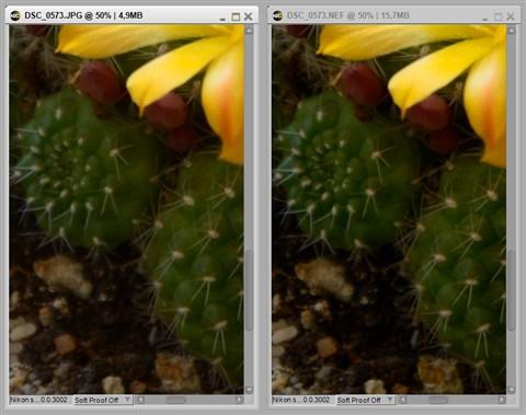incamera_vs_Capture_nx