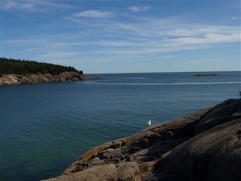 Acadia_1