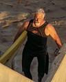 LJ SURFER