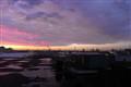 Rotterdam harbour stefan gross