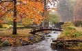 Mill Falls Creek, Boxford, MA, USA