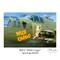 B25-J_ Wild Cargo_AJG_MG_8689-1