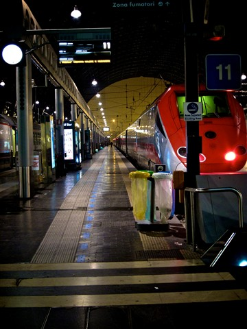 TrainsNov2010 003