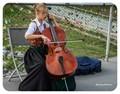Salzburg Musician