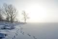 Serene Silence