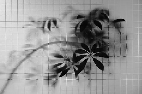 Monochrome-050