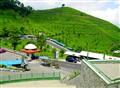 park & tea farm