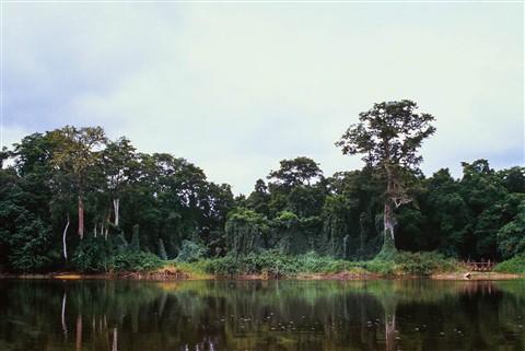 Ogooué, Gabon