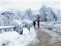 Winter Wonder Land (Ontario. Canada)