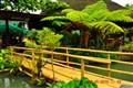 Palaisdaan at Kamayan Restaurant (Lucban, Quezon, Philippines)
