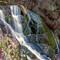 kirstenbosch_waterfall_IMG_3668