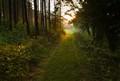 The sun path