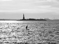 Back to homeland - goodbye NYC!!!