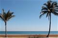 Ocean Drive Palms & Ocean 2