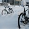 cycles_in_snow_4dpr