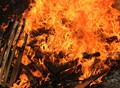 Crackling, burning wood.