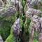 Micro Canyon