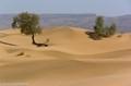 Morocco desert south of Zagora'