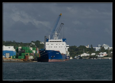 Hamilton Harbour Docks 12Nov20 (Albuoys Point 12Nov 2012_10)