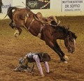 A close call at the rodeo