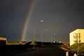 The Rainbow Runner