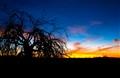 Glamis Sunrise