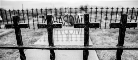 Organ_cemetery-4756