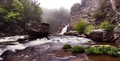 Misty Morning at Linville Falls
