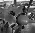 Yakovlev Yak-18 (Max)