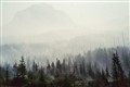 Forest fire in British Columbia, Canada