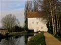 Quy Mill