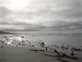 Sky&Sand