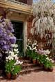 Fioli Mansion & Gardens