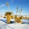 WHITE SANDS WHITE SNOW