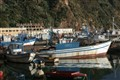 Fishing Boats in Skikda