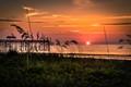 Amelia Island Florida Sunrise