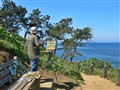 Painter in LaJolla California