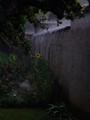2006_07162006juillet10010