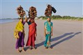 Women of Diu - Carrying Wood to the Market