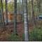 Sanders Ridge Winery - Rental cabin view
