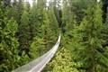 Capalino bridge Vancouver BC