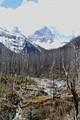 Banff Canadian Nat'l Park- rivulet