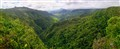 Black River Gorge 180 degrees Panorama