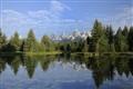 Schwabacher Beaver Pond