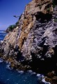 Photo of cliff diver at La Quebrada Acapulco Mexico.  This was taken around 1997-1998 with a film camera.