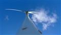 Wind Turbine at Albany