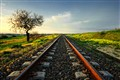 Almond tree and railroad in Sardinia