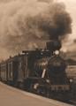 Wood Burning Train
