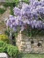 Hever Castle Garden, England